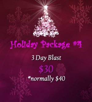 holidaypackage4