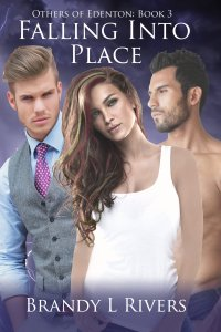 Falling Into Place - Book 3