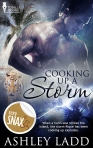 Booking Storm - Book Cover