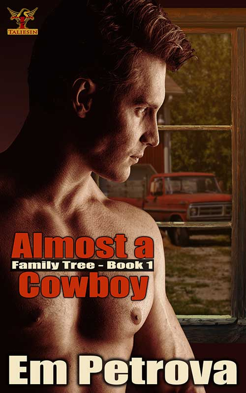Almost A Cowboy - Book Cover