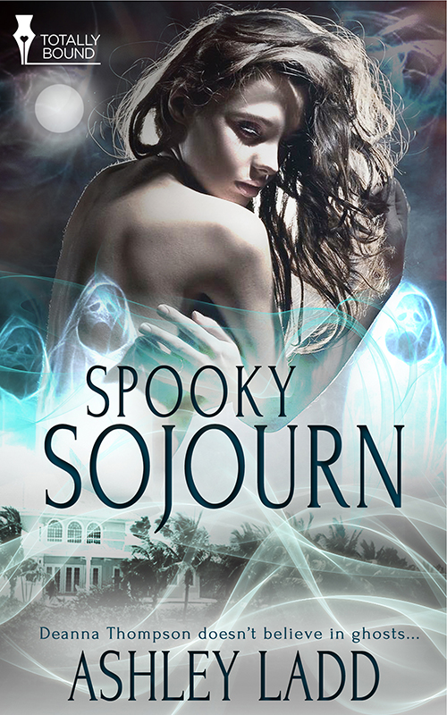 Spooky Sojourn - Book Cover