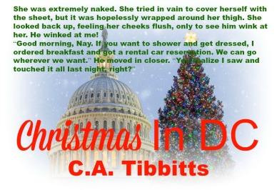Christmas in DC - Teaser 2