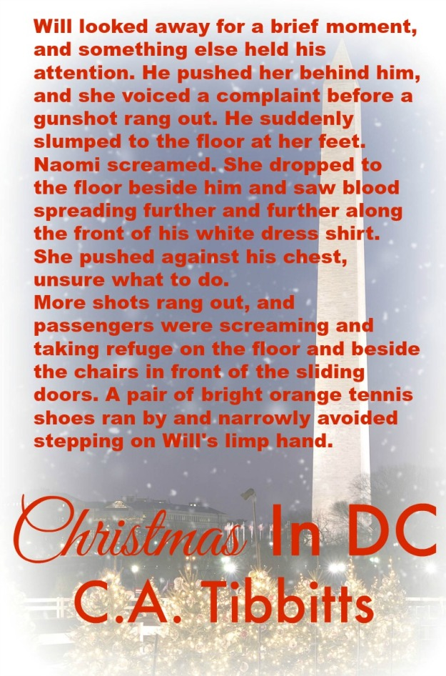 Christmas in DC - Teaser 3