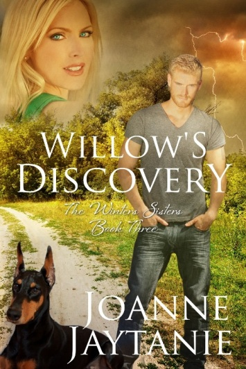 book-3-willows-discovery